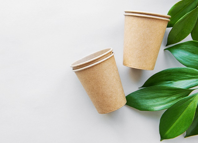 eco-friendly disposable cardboard cups
